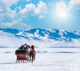 Kars Turlarını İnceleyiniz!